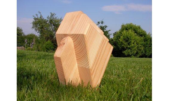 Solarglas Zubehör Aufpreis Holzart in Douglasie/Lärche